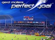 Perfect Goal